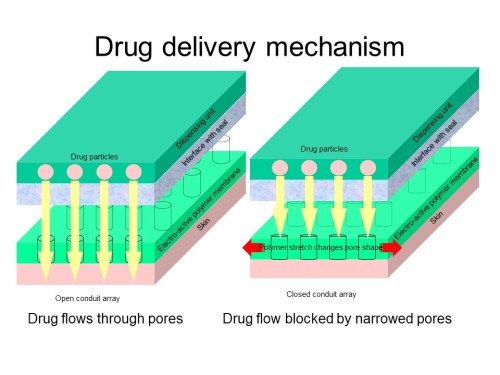 Drug delivery mechanism